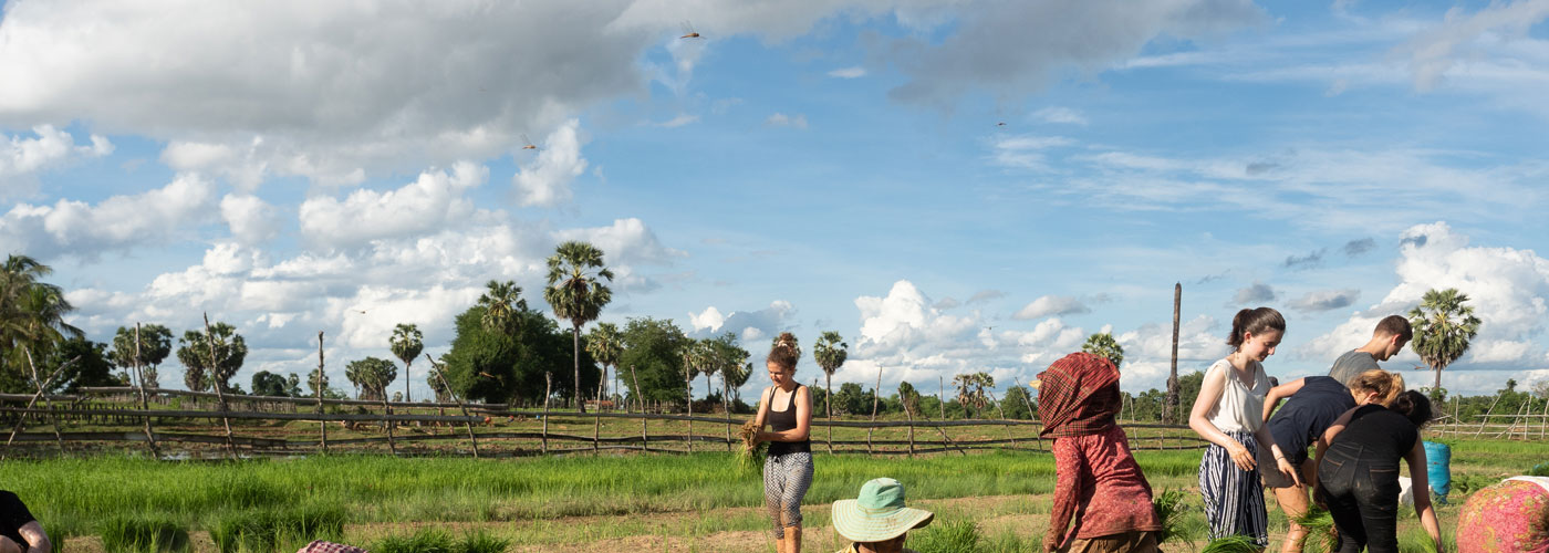 Cambodge [en immersion]